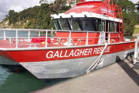 Gallagher Rescue